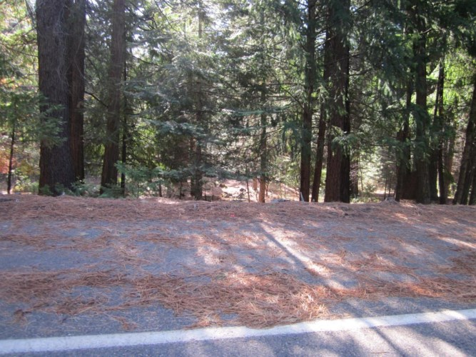 4505 STRING CANYON Road, Grizzly Flats, CA 95636