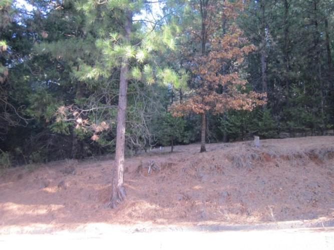 5314 PINE RIDGE Drive, Grizzly Flats, CA 95636