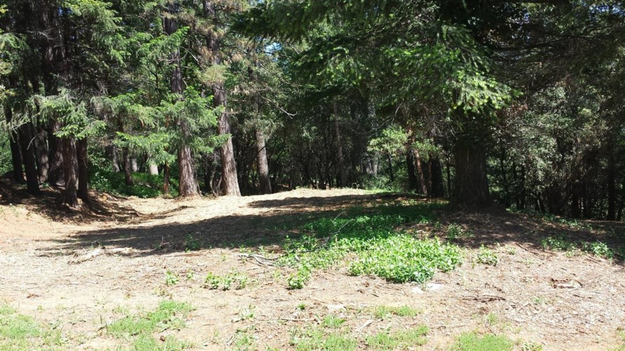 15 Mosquito Ridge Road, Foresthill, CA 95631