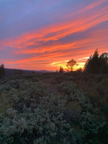 8131 Grizzly Flat Road, Somerset, CA 95684
