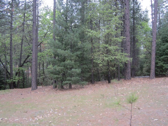 3792 Stope Drive, Placerville, CA 95667