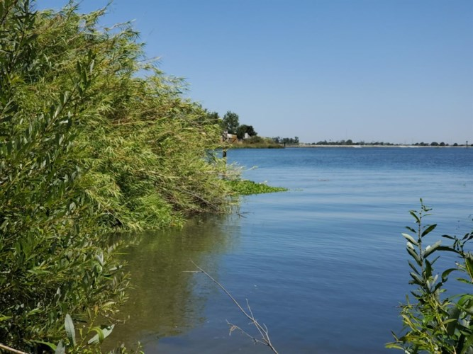 11330 W Spud Island, Stockton, CA 95219