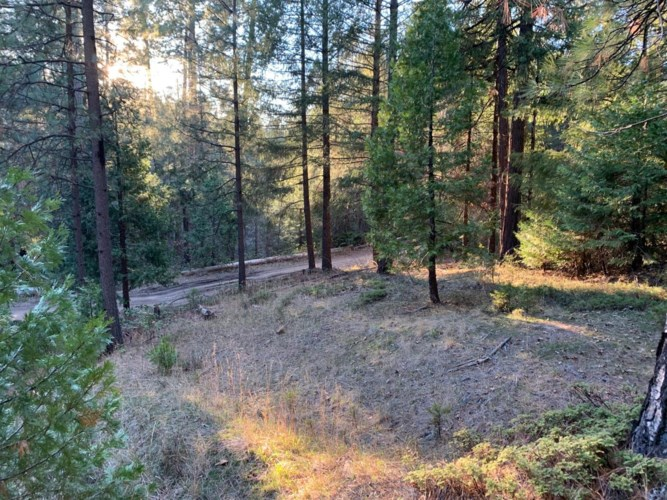 5255 Humbug Road, Grizzly Flats, CA 96150