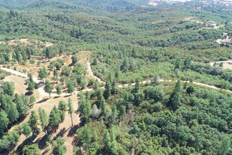 12377 Twin Pines Road, Sutter Creek, CA 95685