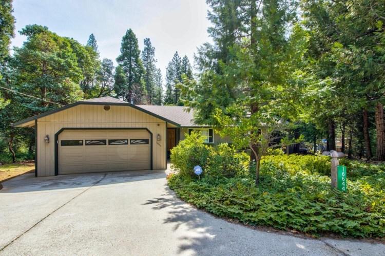 16644 Meadow Vista Drive, Pioneer, CA 95666