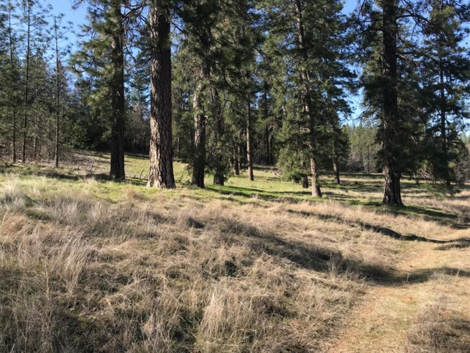 17057 Tyler Road, Fiddletown, CA 95629