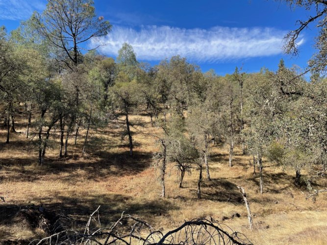 22252 Retherford Road, Grass Valley, CA 95949