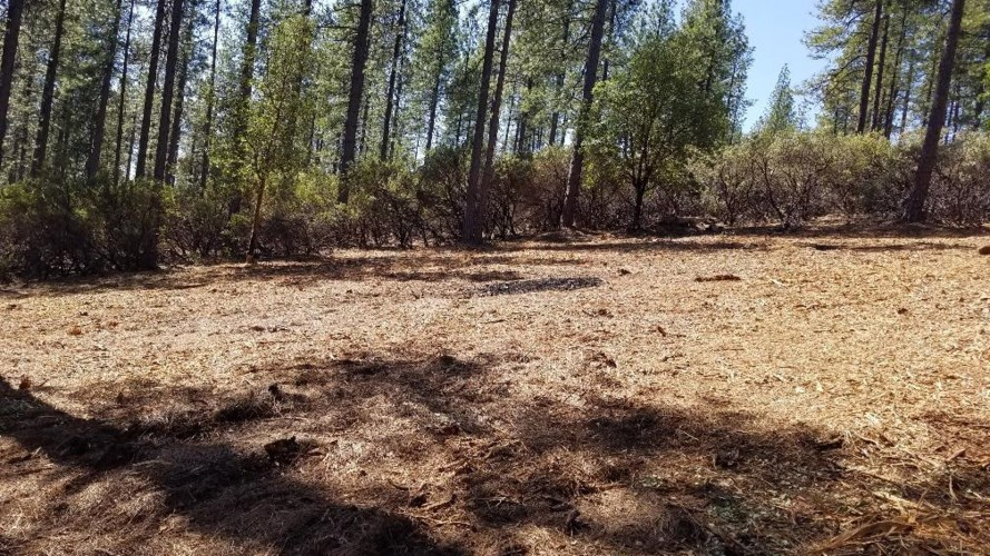 12892 Allison Ranch Road, Grass Valley, CA 95949
