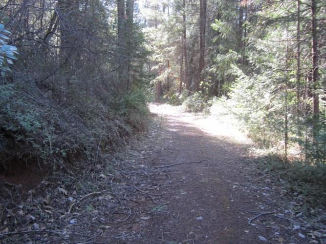 1636 Swansboro Road, Placerville, CA 95667
