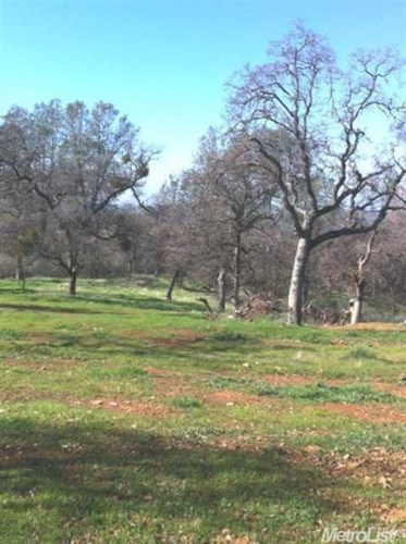 10 piney creek Road, Coulterville, CA 95311