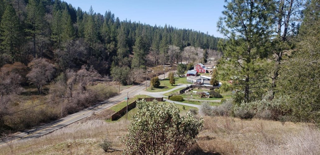 1 Moose Trail, Greenwood, CA 95635