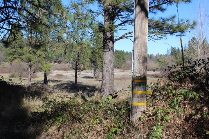 12900 Francis Drive, Grass Valley, CA 95949