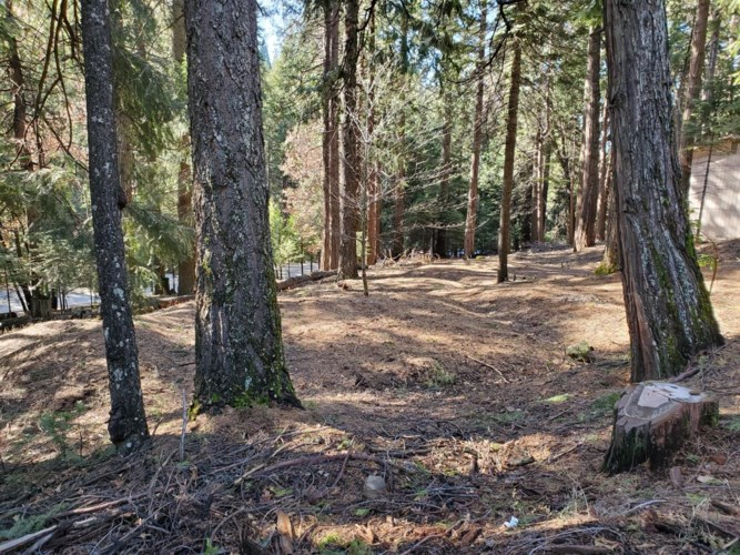 3280 GOLD RIDGE Trail, Pollock Pines, CA 95726