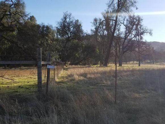 5254 Jaquima Drive, Angels Camp, CA 95222