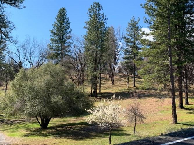 7216 Railroad Flat Road, Mountain Ranch, CA 95246