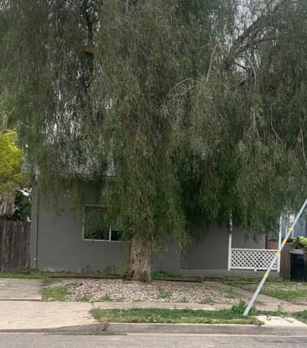 256 S 2nd Avenue, Oakdale, CA 95361
