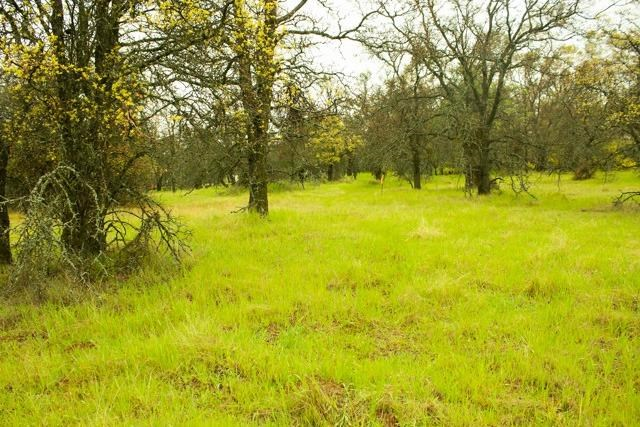 3261 Granite Springs Road, Coulterville, CA 95311