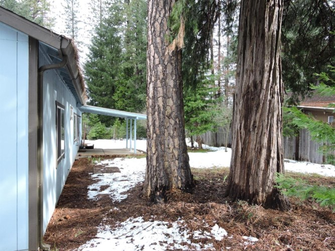 5297 Blue Mountain Drive, Grizzly Flats, CA 95636