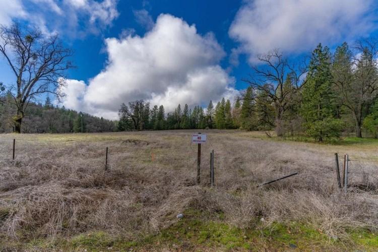 0 Homestead Road, Pine Grove, CA 95665