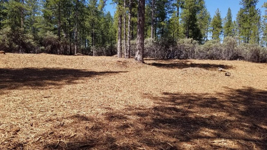12804 Allison Ranch Road, Grass Valley, CA 95949