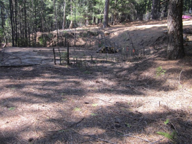 4536 STRING CANYON Road, Grizzly Flats, CA 95636