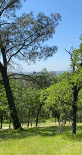 9719 Lanza Lane, Browns Valley, CA 9518