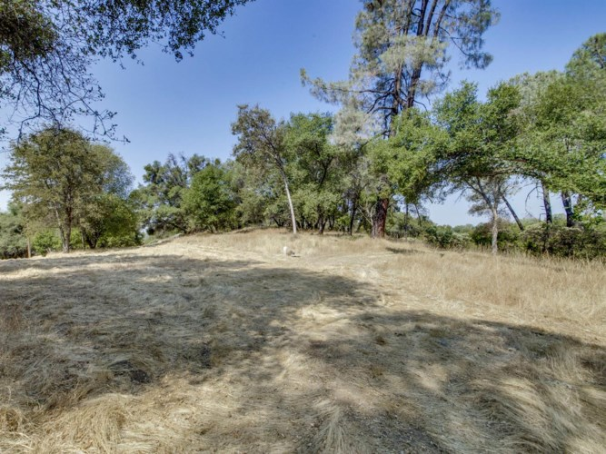 3737 Freedom Way, Placerville, CA 95667