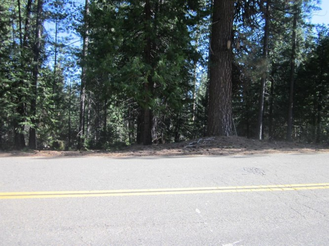9986 GRIZZLY FLAT Road, Grizzly Flats, CA 95636