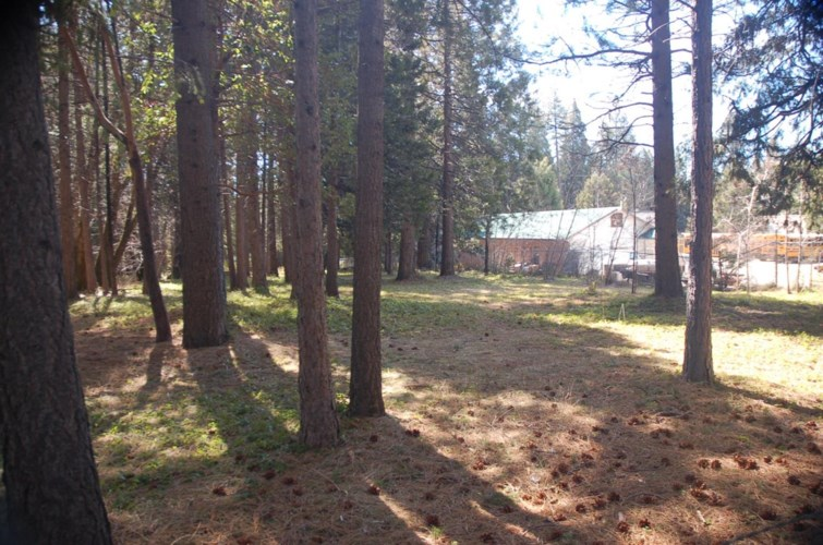 0 2 acres on Foresthill Road Road, Foresthill, CA 95631