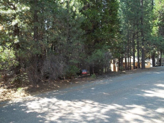 4936 Coralaine Drive, Grizzly Flats, CA 95636
