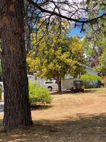 516 Whiting, Grass Valley, CA 95945