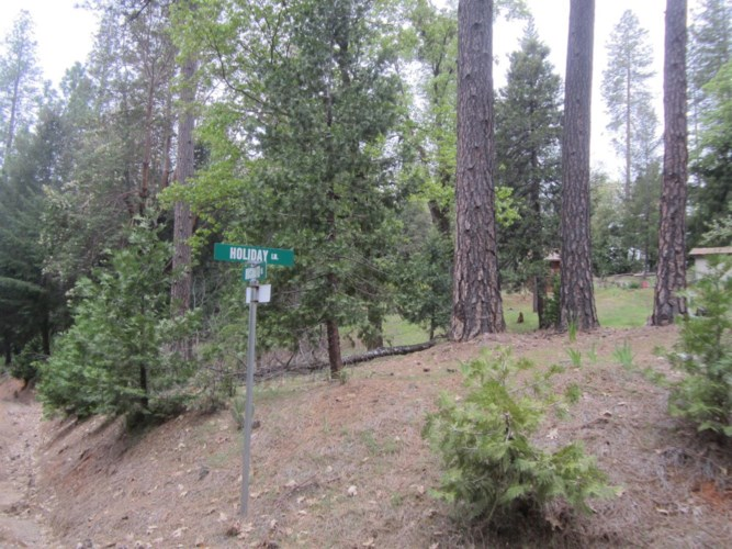 3301 Holiday Lane, Placerville, CA 95667