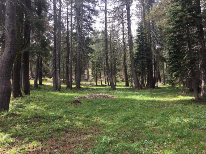 7134 Coral Flat Road, Grizzly Flats, CA 95636