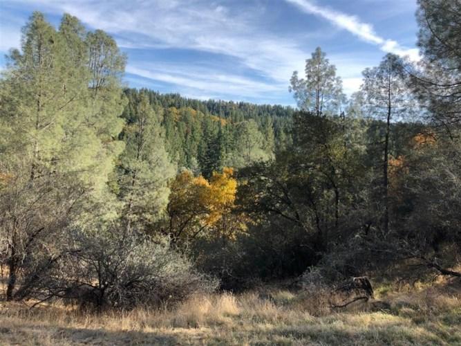 5371 Five Spot Road, Pollock Pines, CA 95726