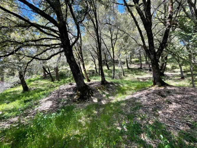 15765 Mountain View Drive, Nevada City, CA 95959