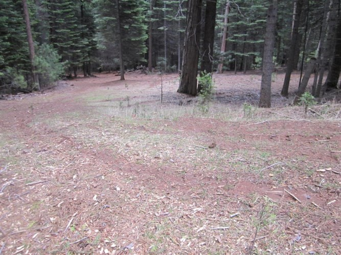 6740 TYLER DR., Grizzly Flats, CA 95636