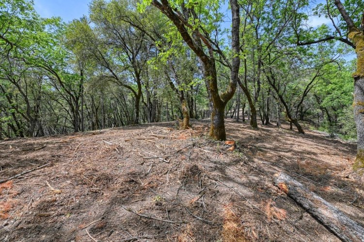2 Forest Lake Place, Weimar, CA 95736
