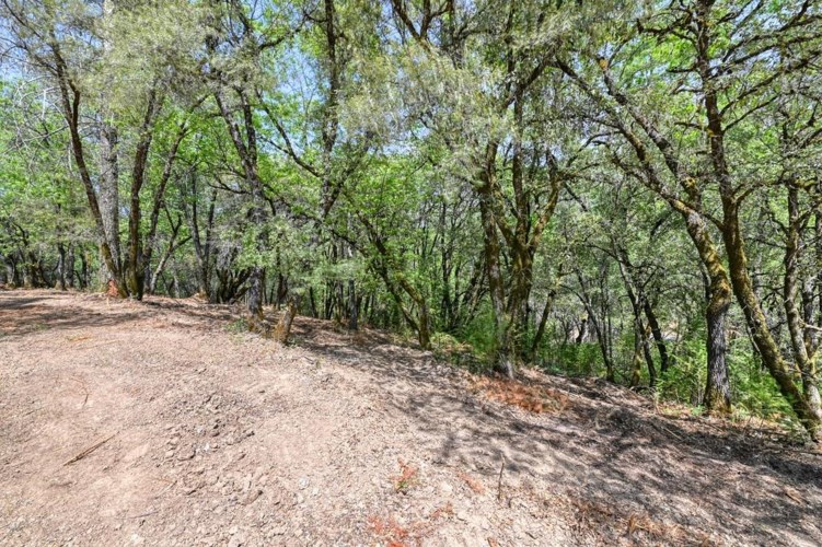 3 Forest Lake Place, Weimar, CA 95736