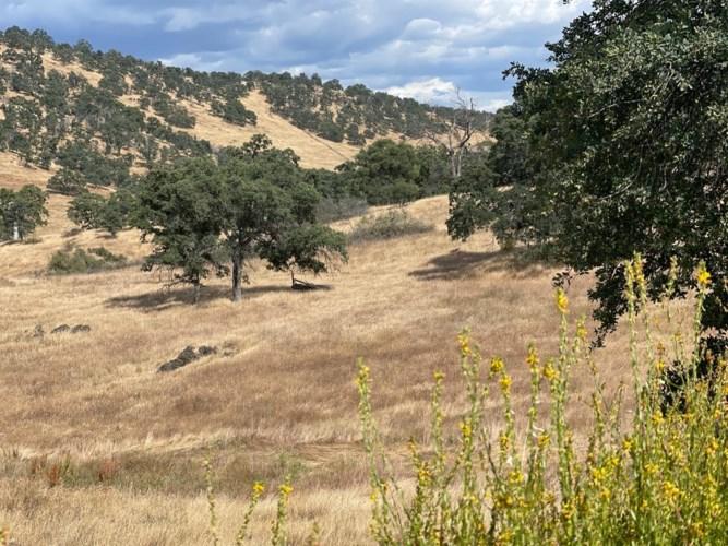 0 Pepito Drive, La Grange, CA 95329