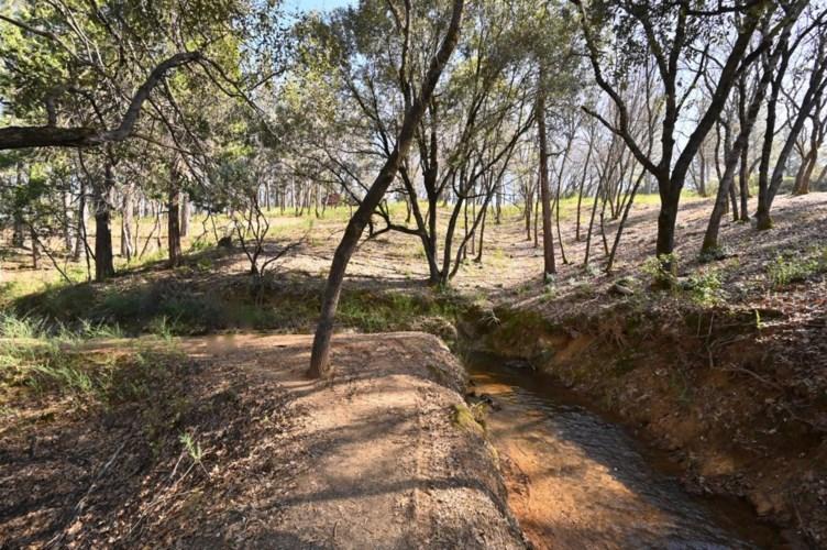 1 Digger Pine Lane, Colfax, CA 95713