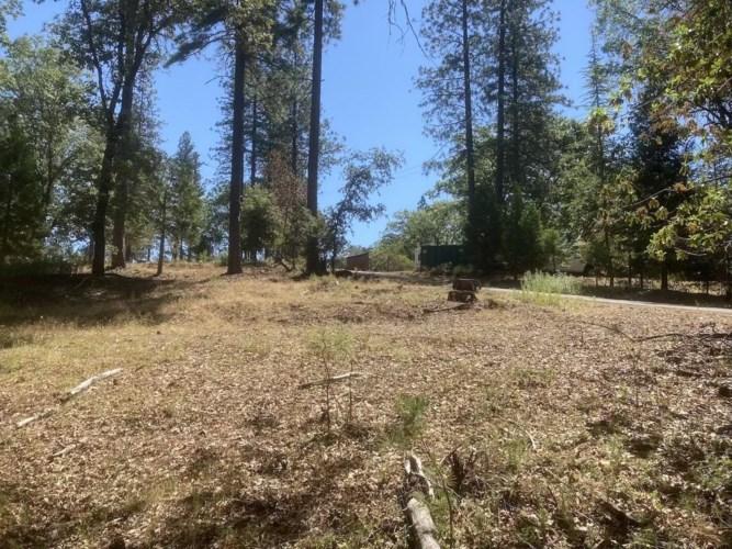 20950 Warner Road East, Pine Grove, CA 95665