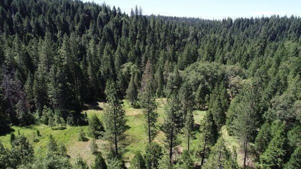 490 Omo Ranch Road, Somerset, CA 95684