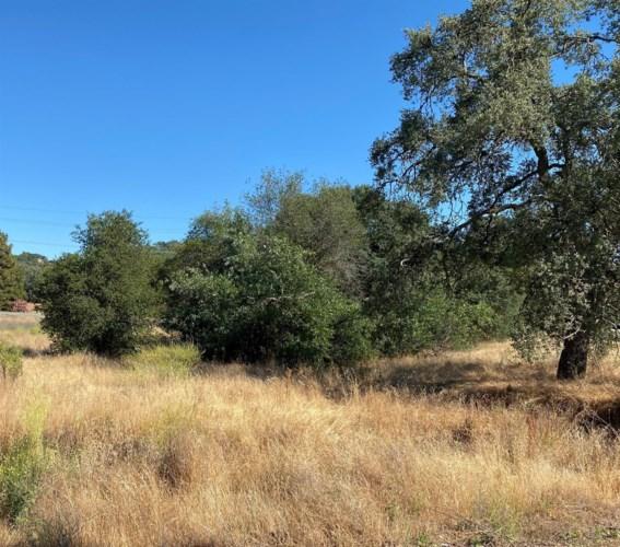 2725 Berkesey Lane, Valley Springs, CA 95252
