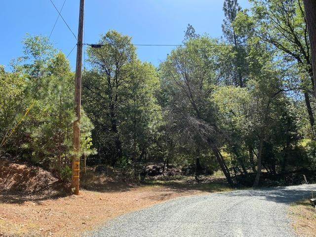 0 Timber Ridge Road, Pine Grove, CA 95665