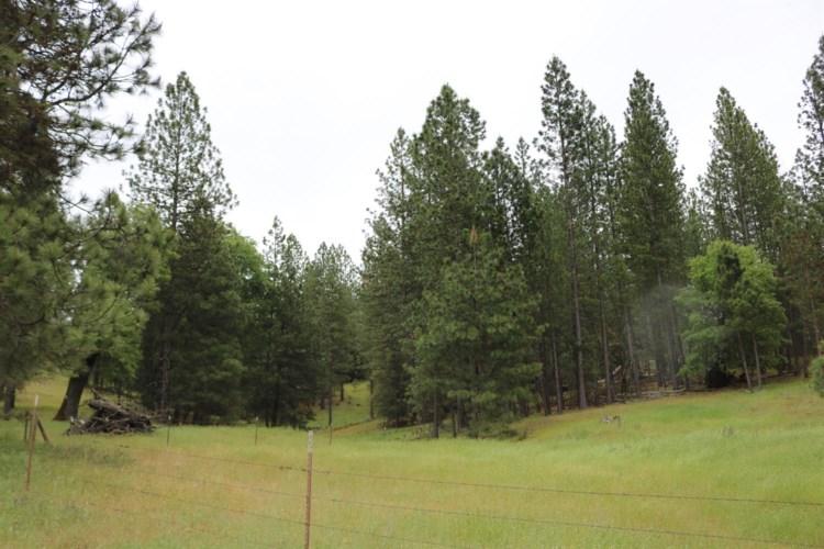 8954 Swiss Ranch Road, Mountain Ranch, CA 95246