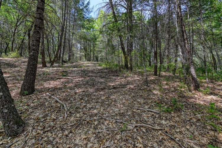 1 Forest Lake Place, Weimar, CA 95736