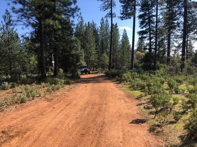 0 Skunk Hollow Rd. Road, West Point, CA 95255