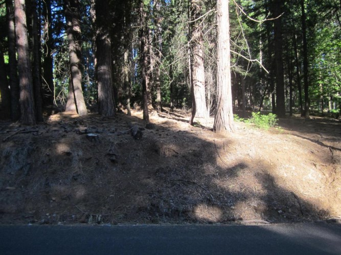 6815 TYLER Drive, Grizzly Flats, CA 95636