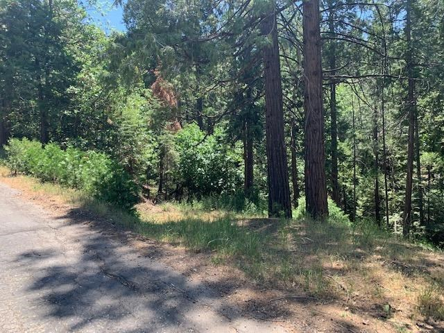 17059 E Brookside Drive, Sonora, CA 95370