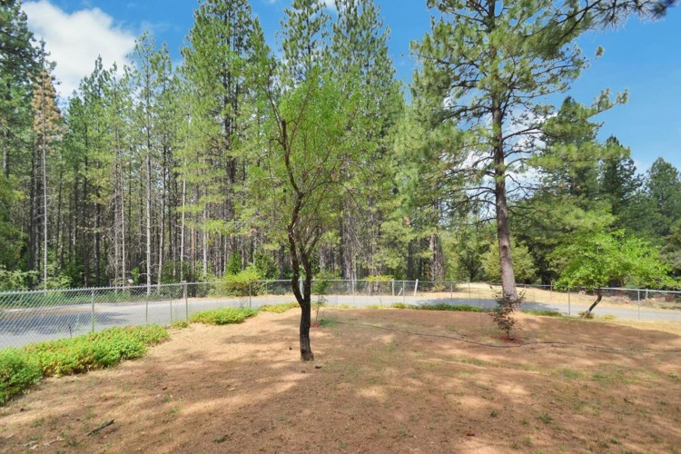 2233 Bald Mountain Road, West Point, CA 95255